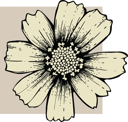 stench: Cosmos flower