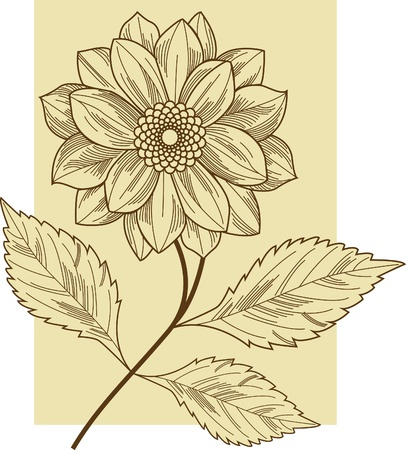 fine art: Flower