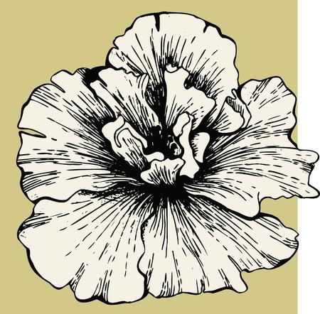 stench: Hibiscus flower