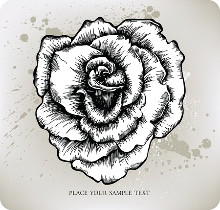tattoo rose: Rose, hand-drawing. Vector illustration.
