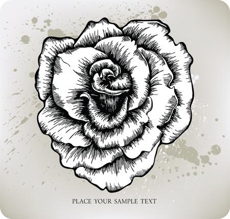 rose tattoo: Rose, hand-drawing. Vector illustration.