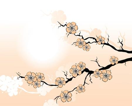 spring in japan: Sakura Branch.