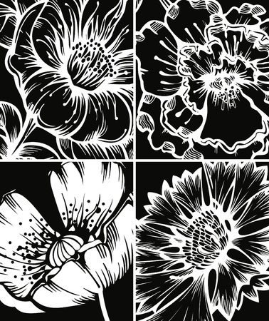 garden cornflowers: Set of floral graphic backgrounds