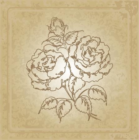label frame: vintage frame with rose