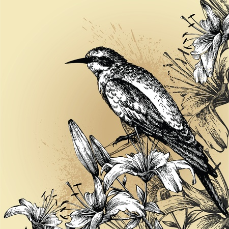 Background with blooming lilies and a sitting bird. Hand drawing. Vector illustration. Vector