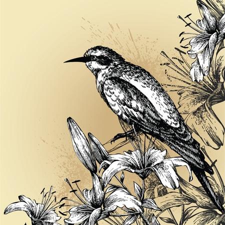 Contexte de fleurs de lys en fleur et un oiseau assis. Dessin � la main. Vector illustration.