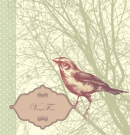 Background with vintage bird sitting on a tree, hand drawn. Иллюстрация