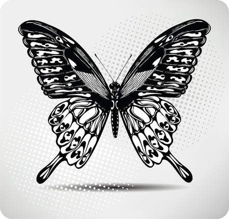 butterfly tattoo: Farfalla mano drawing.Vector. Vettoriali