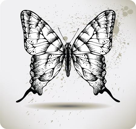 Butterfly hand drawing.Vector. Иллюстрация
