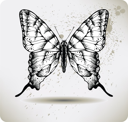 silhouette papillon: Drawing.Vector la main papillon. Illustration