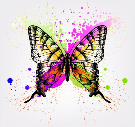 Decorative butterfly with bright spots. Vector illustration. Illustration