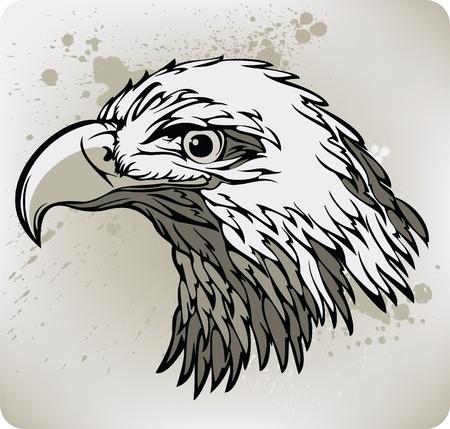 Eagle. Vector illustration.  Vector