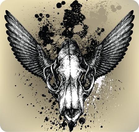 Skull Lion&wings. Vector illustration  Vector