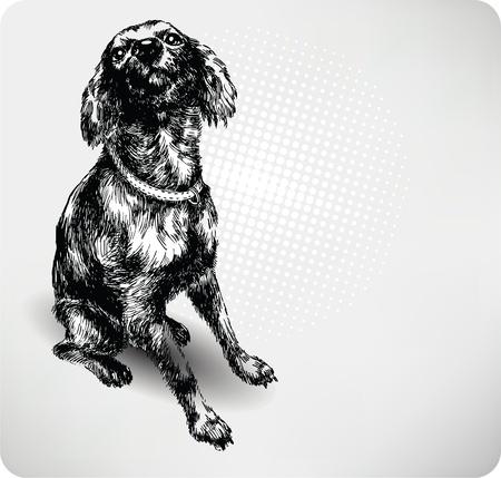 homelessness: Sweet Dog mano disegno vettoriale.