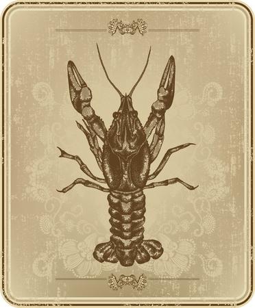 Vintage frame with crayfish, hand drawing. Vektoros illusztráció