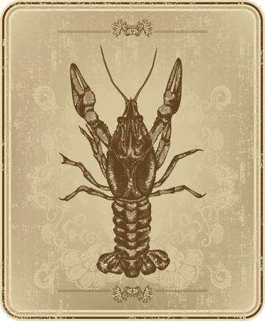 Vintage frame with crayfish, hand drawing. Vector