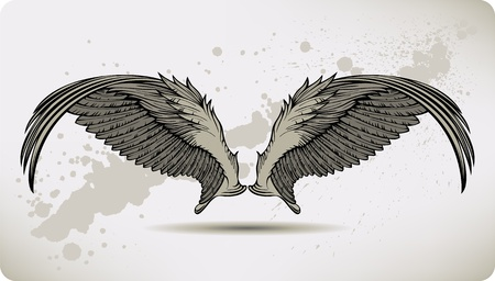griffon: Wings Griffon, hand drawing. Vector illustration. Illustration