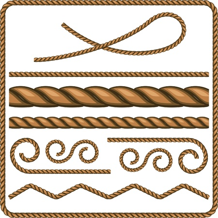Ropes and knots. Vector