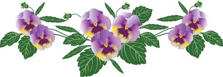 natura morta con fiori: Viole del pensiero. Vettoriali