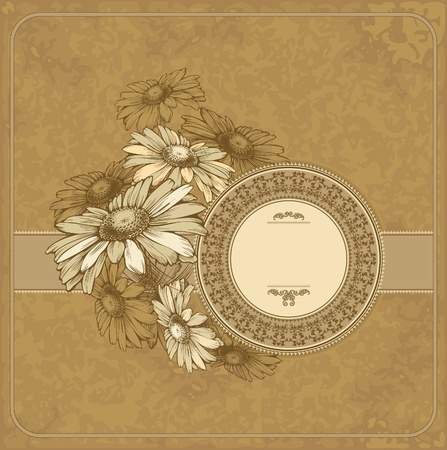 Vintage frame with blooming chamomile. Vector