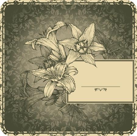 aristocrático: Marco de la vendimia con lirios en flor Vectores