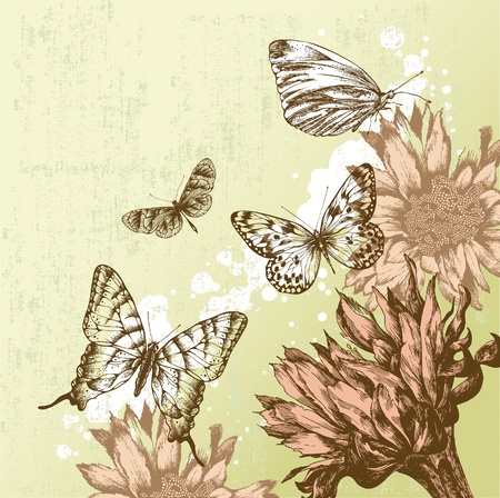 Vintage background with beautiful butterflies and blooming flowers. Vector illustration. Illustration