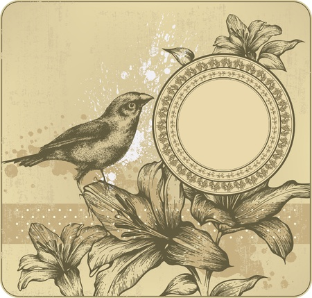 aristocrático: Fondo de la vendimia con el marco, los lirios que florecen y los p�jaros. Dibujo a mano. Vector.