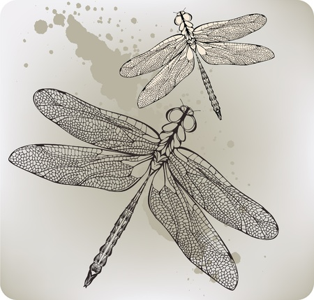 Flying dragonfly, hand-drawing. Vector illustration. Иллюстрация