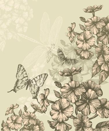 mariposas volando: Fondo floral con flor Phlox y mariposas que vuelan, dibujo a mano. Vector.