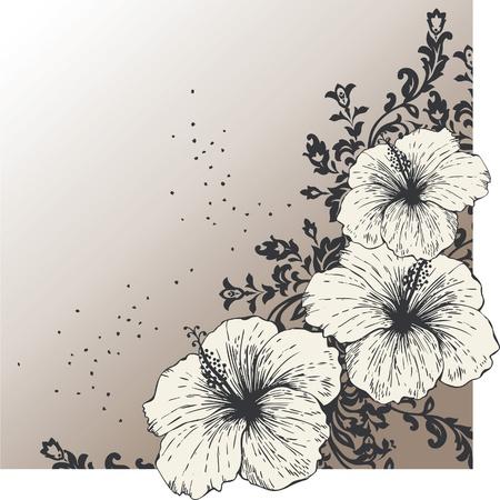 ibiscus: Sfondo astratto con fiore di ibisco Vettoriali