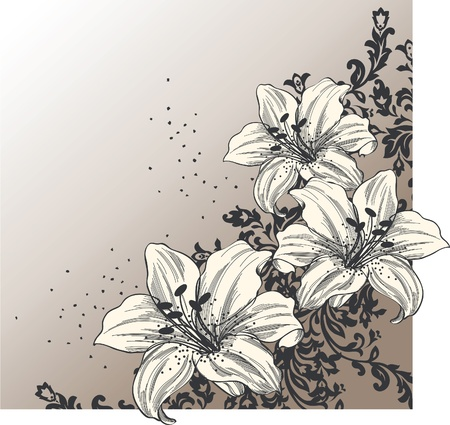 pencil drawing: Abstract background with blooming lilies  Illustration