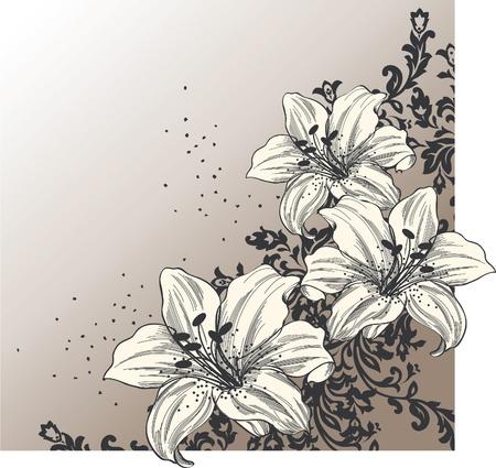 dessin fleur: R�sum� de fond avec lys en fleur