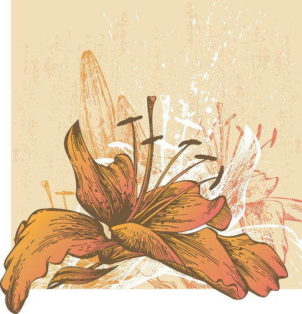 tiger lily: Abstract background with blooming lilies Illustration