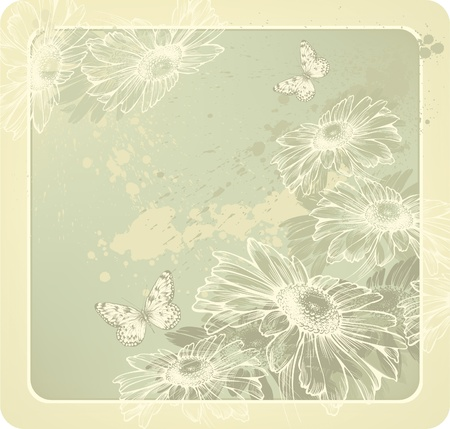 Background template with blooming daisies and butterflies Vector