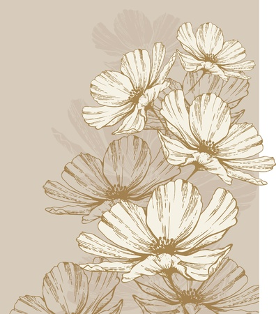 hand drawn flower: Background with blooming flowers. Illustration