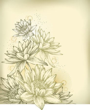 botanical drawing: Background with hand drawn water lilies