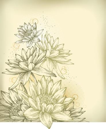 botanika: Souvislosti s rukou vyvodit lekníny Ilustrace