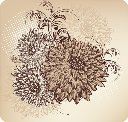 flower line: Floral background with blooming chrysanthemums Illustration