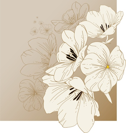 Floral background with blooming tulips