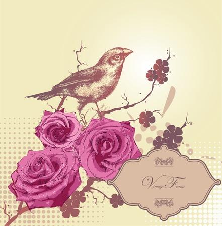 pajaro dibujo: fondo floral con rosas de color rosa y un pájaro