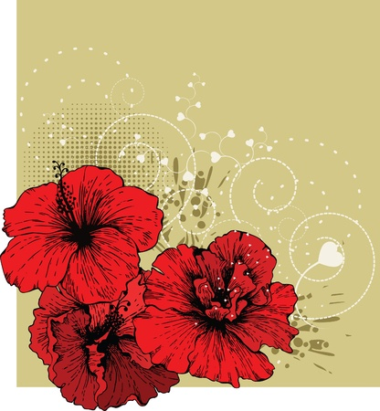 date of birth: Floral background with red hibiscus
