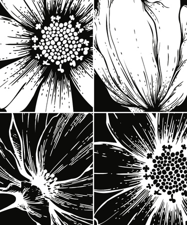 flower of live: Set of floral graphic backgrounds
