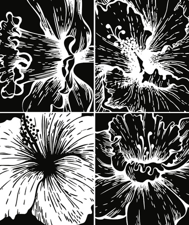 Set of floral graphic backgrounds Stock Vector - 12816871
