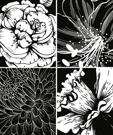 Set of floral graphic backgrounds Stock Vector - 12816870