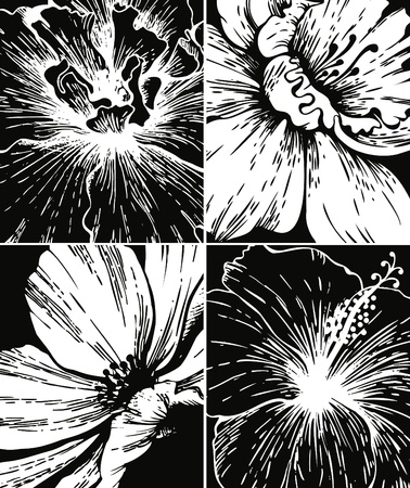 Set of floral graphic backgrounds