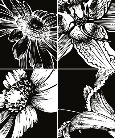 tiger lily: Set of floral graphic backgrounds