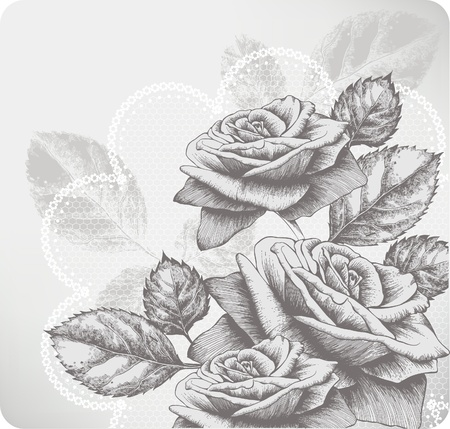 Background with blooming roses and glamorous lace