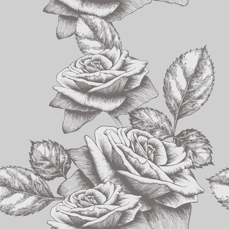 plant delicate: Seamless background with roses blooming