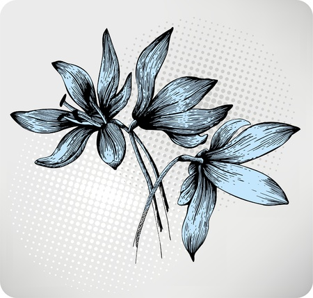 Bouquet of spring Scilla, hand-drawing. Vector illustration. Иллюстрация