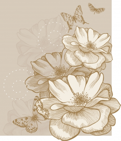 Floral background with butterflies and roses, hand-drawing. Vector